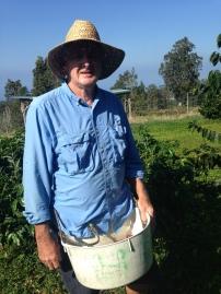 Farm at Hula Daddy Kona Coffee